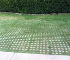 Golf Cart Parking at River Oaks Golf Club in Edmond, OK
