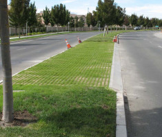 0731120540NorCal-DG-Installations-1_drivable_grass_opt
