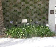 0828120452CSP-Verdura2_verdura_garden_wall_opt