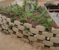 Verdura® Plantable Retaining Wall Blocks at the Laguna Beach County Water District 2013 Smartscape Info/Expo
