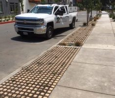 Ranch Ranch Apartments in Santa Rosa, CA. Installed by Cima's Landscape & Maintenance, Inc.